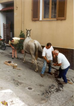 Ambulanter Schmied - 1990 Castelsardo